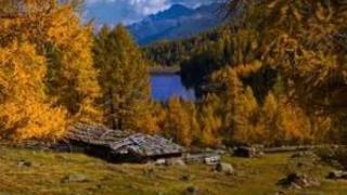 Naturschauspiel im Herbst