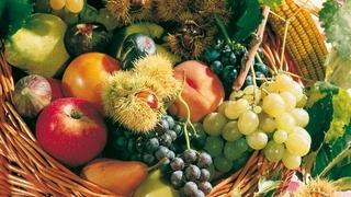 Herbstausklang für Genießer