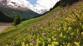 """""""Südtirol Balance"""" – Erholung finden in der Natur"""