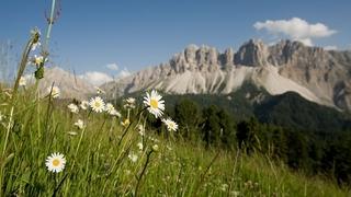 Vacanza breve - Romanticismo in montagna