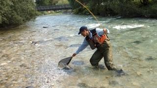 Fliegenfischen an der Etsch 3 Tage