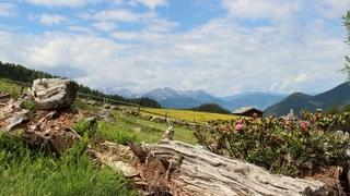 Esperienze in Val Casies