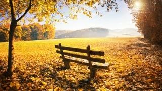 Magico autunno per famiglie