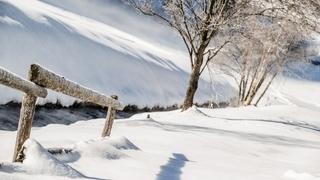 Wieser's Spezialwochen im Winter 7=6