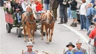Azionamento del bestiame a Pfelders