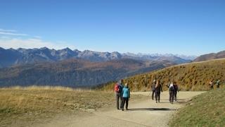 Pausa rigenerante nell'aria di montagna Gitschberg Jochtal