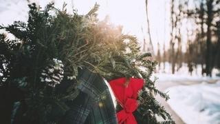 Giorni natalizi