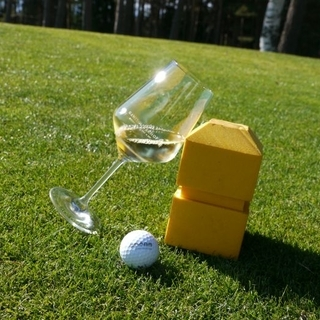 Ganis Learn to Golf (7 Tage)
