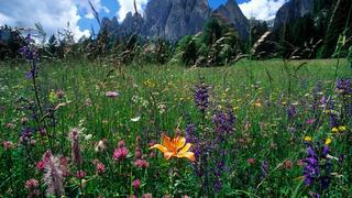 Sanft-mobiles Dolomiten-Erlebnis