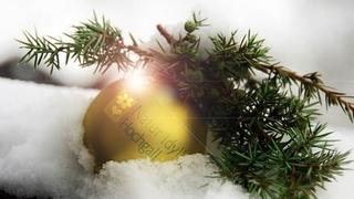Magico Natale : Auszeit-Hotel Natur Idyll Hochgall