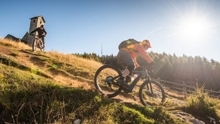 Giorni soleggiati di mountainbike x 315