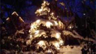 Natale al Bellevue; 7=6 /5=4