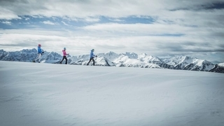 """""""Tracks in the snow"""" snow shoe hiking week"""