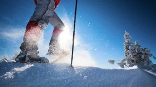 Alpen Advent