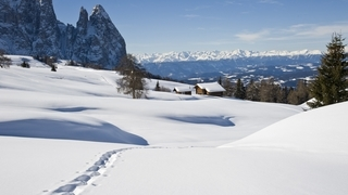 Magische Wintermomente in den Dolomiten