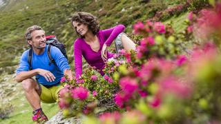 Primavera e Tempo delle Escursioni