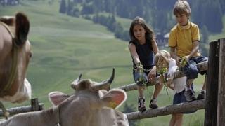 Dolomites - family - weeks
