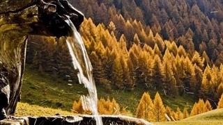 Le voci dell'autunno