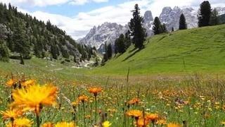 Primavera in montagna