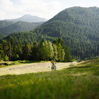 Ganis Sense E - Bikehotels Südtirol